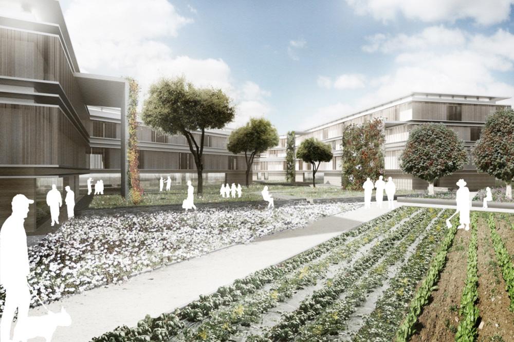 vallotto-architetto_Masterplan_sanvitonord